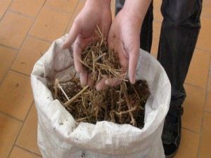 Уральск. У сельчан изъяли 8 килограммов марихуаны gov.ru
