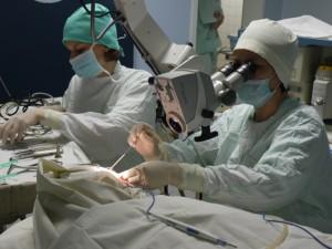 Уральские хирурги будут проводить уникальные операции msmsu.ru