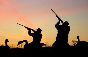 В Атырауской области объявлен сезон охоты resthunting.ru
