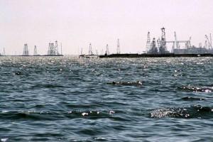Новости Атырау - В Атырау за пять лет на охрану природы потратили 260 млрд тенге eko_www.dkvartal.ru
