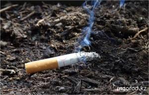 В Атырау за брошенный окурок сажают на 10 суток smoke_www.newsland.ru