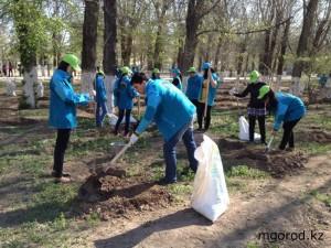 В Атырау посадили именные деревья tree_www.mgorod.kz