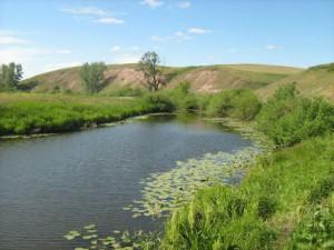 Новости Актобе - В Актюбинской области утонул ребенок fototerra.ru