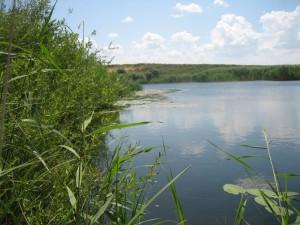 Новости Уральск - В ЗКО в реке Утва утонул инвалид второй группы www.blogmihaila.org