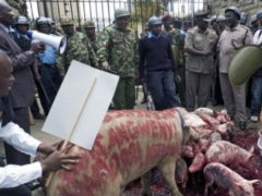 Новости - В Кении прошел массовый протест против повышения зарплат депутатов 11