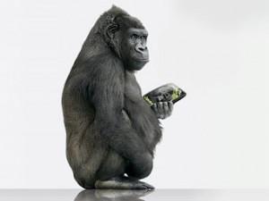 Новости - Стекла от смартфонов начнут ставить на автомобили 16