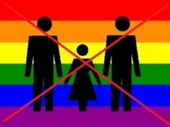 Новости - Госдума проголосовала за запрет на усыновление детей однополыми парами фото с сайта fn-volga.ru