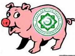 Новости - В Алматы в колбасе «халал» обнаружили свинину фото с сайта www.islam-penza.ru