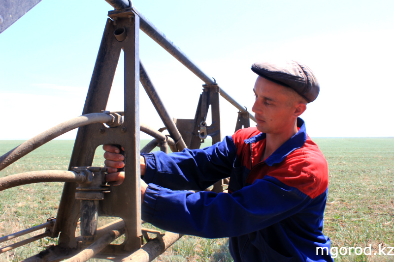 В Актюбинской области началась борьба с саранчой (ФОТОРЕПОРТАЖ) mgorod.kz 9