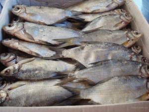 Новости Актобе - В Актобе обнаружен подпольный рыбный цех Фото с сайта www.ru.all.biz -