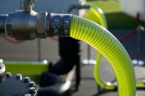 В Японии намерены делать авиационное топливо из водорослей Фото daypic.ru