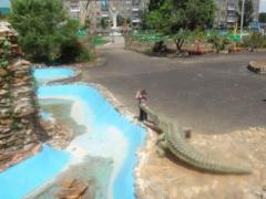 Новости - В Северном Казахстане открыли «Парк Юрского периода» фото с сайта sko.kz
