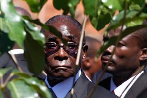Пока смерть не разлучит их Роберт Мугабе Фото: Philimon Bulawayo / Reuters