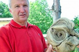 В Меджумурской жупании нашли «голову инопланетянина» Кадр: видео YouTube