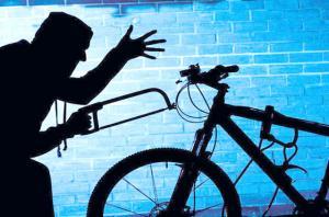 Новости - Худой, как велосипед Фото express-k