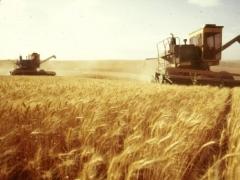 Нурсултан Назарбаев встретился с сельхозтоваропроизводителями Северного Казахстана фото с сайта agro-new.ru