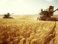 В Казахстане на уборочную кампанию направят более 17 миллиардов тенге фото с сайта agro-new.ru