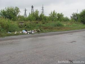 Жители ЗКО выбросили мусор из салонов авто на 8,5 млн тенге musor