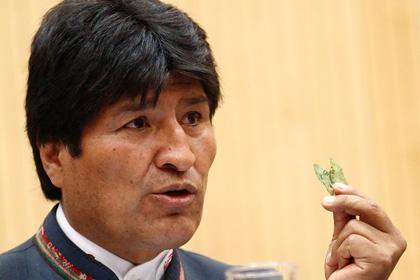 Новости - Судья с помощью листьев коки предсказал президенту Боливии новый срок Эво Моралес с листком коки Фото: Heinz-Peter Bader / Reuters