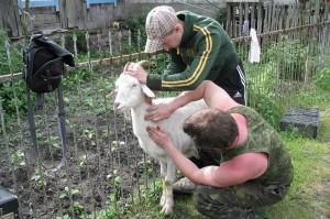 В Атырауской области уничтожают больную бруцеллезом скотину Иллюстративное фото с сайта www.zapovednik-vrn.ru