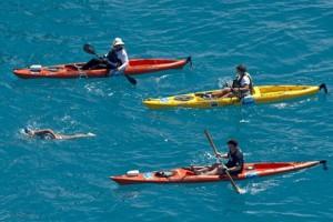 Новости - Американская бабушка переплыла пролив между Кубой и США Дайана Найад Фото: Andy Newman / FLORIDA KEYS NEWS BUREAU / AFP