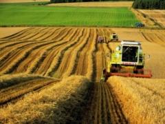 На оздоровление агропромышленного комплекса Казахстана направят два миллиарда тенге фото с сайта biznestoday.ru