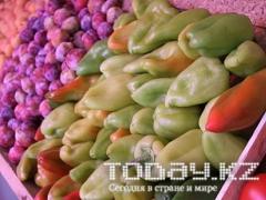 Фермеры представили на ярмарке в Астане более 400 тонн продукции фото Today.kz