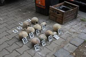 На улицах Праги нашли 16 черепов Фото: пресс-служба полиции