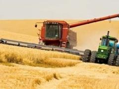 Новости - В Казахстане убрано 30% урожая зерновых фото с сайта km.ru