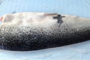 В Швеции поймали лосося–«христианина» Фото: The Local