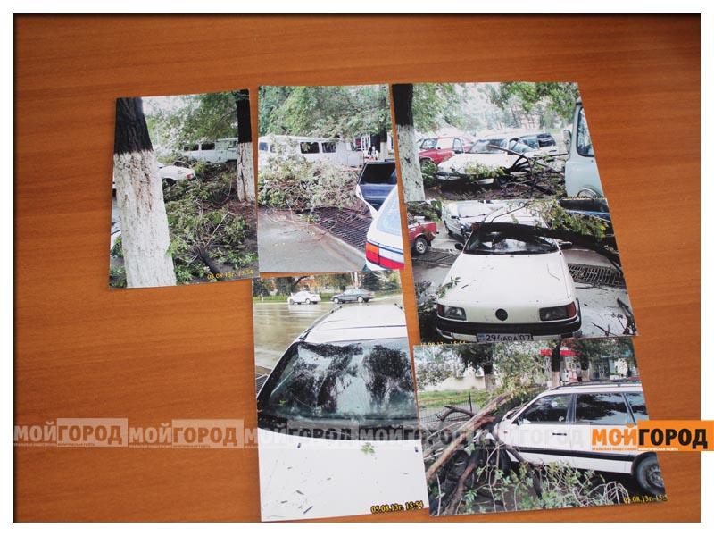 Новости Уральск - Жесткую «обрезку» деревьев возле ТЦ в ЖКХ объясняют заботой о здоровье граждан der_diana1