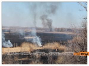 В Уральске на 20 гектарах земли горит сухая трава pojarstep