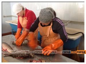 В атырауской женской колонии будут выпускать рыбную продукцию   ryba1