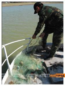 В Атырау изъяли более одной тонны осетров fish2