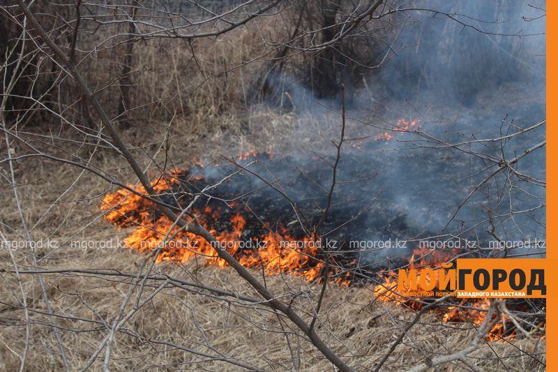 Новости Уральск - В Уральске горела сухая трава на площади 6 гектаров pojar (2)