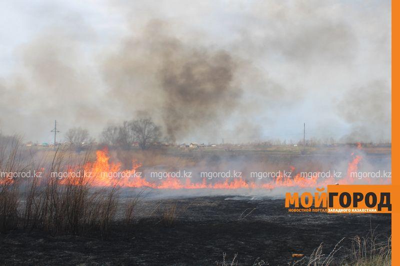 Новости Уральск - В Уральске горела сухая трава на площади 6 гектаров suhostoi (2)