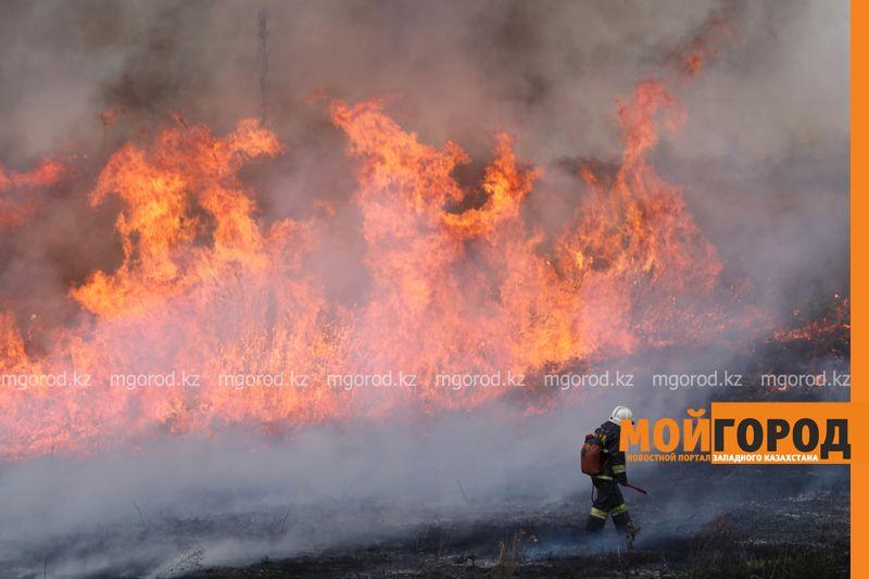 Новости Уральск - В Уральске горела сухая трава на площади 6 гектаров suhostoi (3)