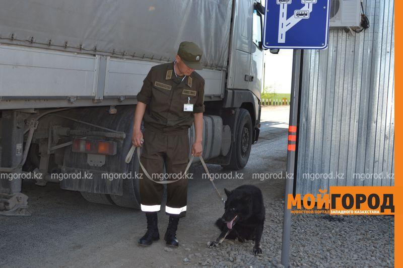 О проблемах пограничных пунктов в ЗКО рассказали сенаторам pogranzastava (5)