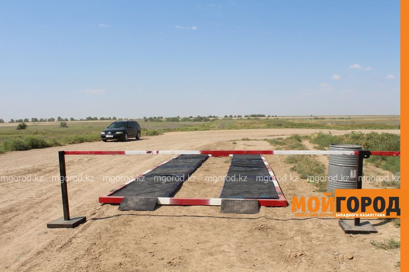Новости Актобе - В Актюбинской области объявлен карантин из-за вспышки бруцеллеза среди КРС