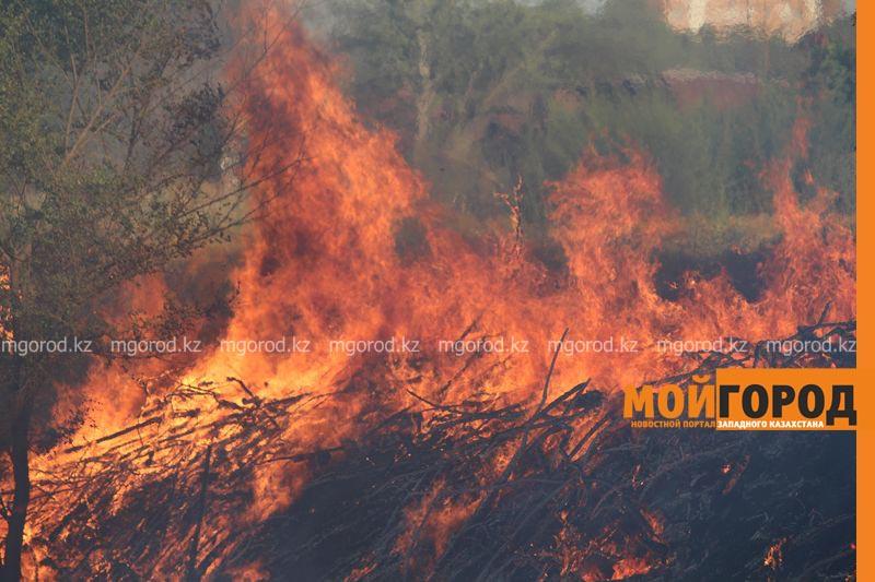 Новости Уральск - Пятый класс пожарной опасности объявлен в ЗКО