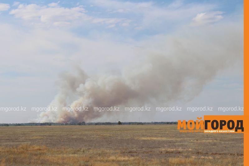 Новости Уральск - 80 пожарных борются с огнем в пригороде Уральска les (2)