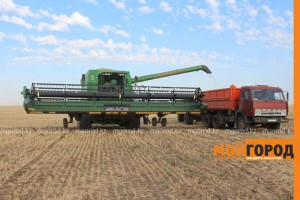 """47% зерновых площадей списано в ЗКО Фото из архива """"МГ"""""""
