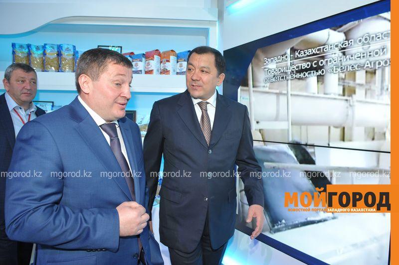 Новости Уральск - Нурлан НОГАЕВ в Сочи пригласил инвесторов в ЗКО для производства верблюжьего молока SAV_7566 [800x600]