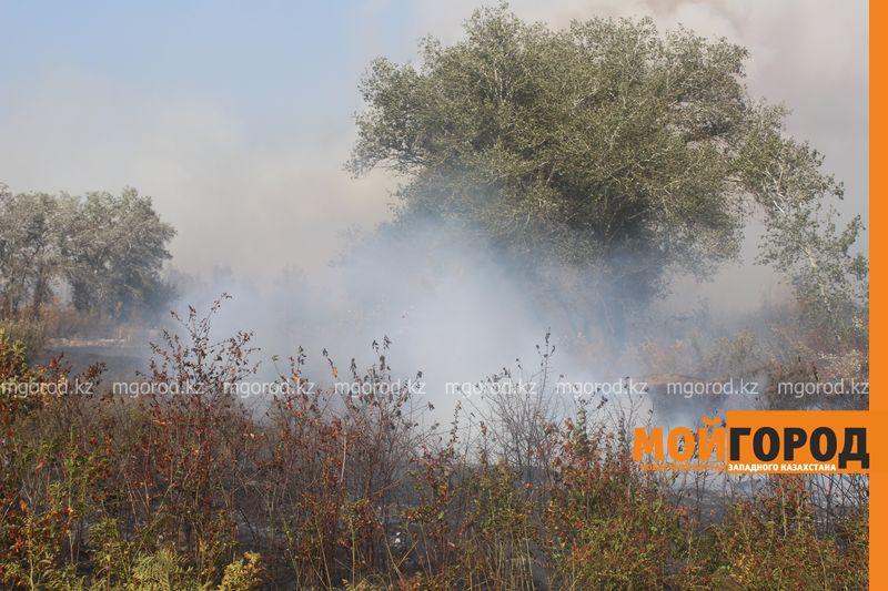 Сильный пожар уничтожает дома вблизи Уральска dachi (12)