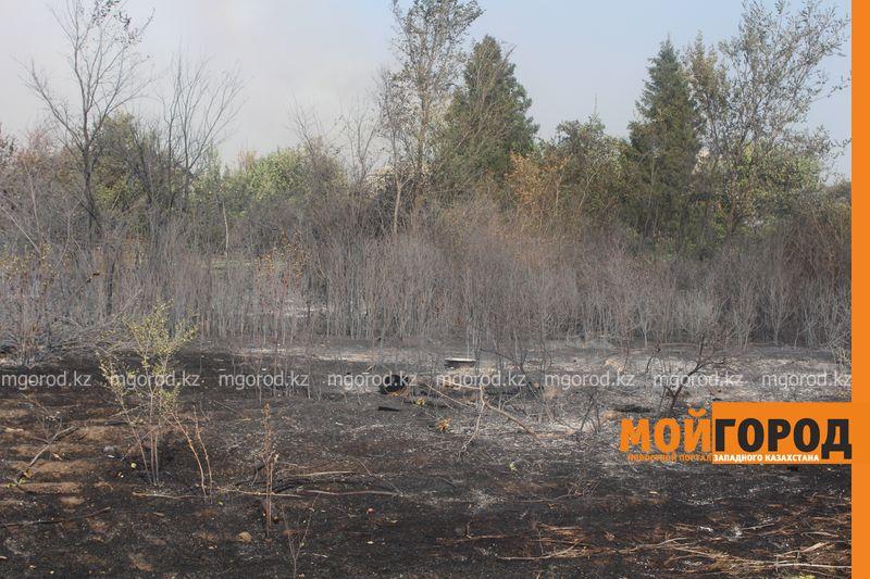 Сильный пожар уничтожает дома вблизи Уральска dachi (15)