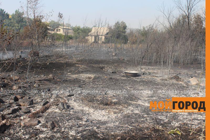 Сильный пожар уничтожает дома вблизи Уральска dachi (18)