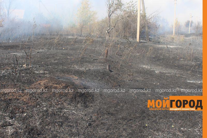 Сильный пожар уничтожает дома вблизи Уральска dachi (23)