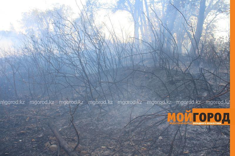 Сильный пожар уничтожает дома вблизи Уральска dachi (25)