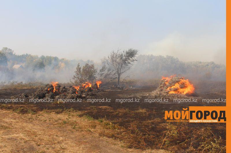Сильный пожар уничтожает дома вблизи Уральска dachi (3)