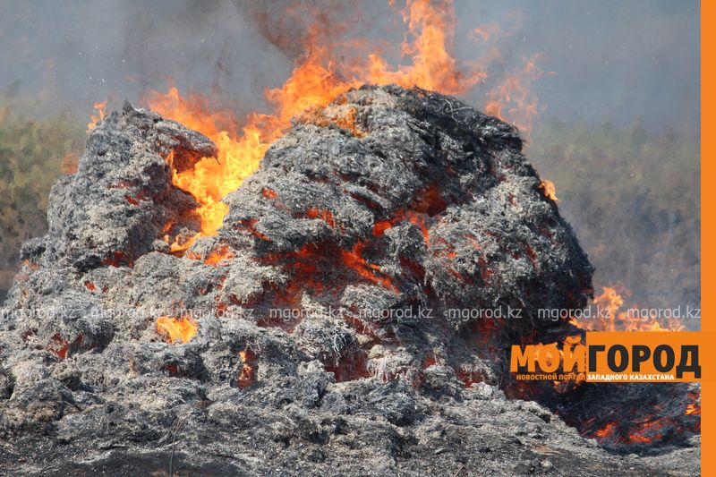 Сильный пожар уничтожает дома вблизи Уральска dachi (6)
